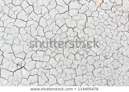 secar · rachado · terra · textura · seca - foto stock © tashatuvango
