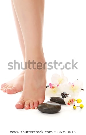 female legs with white orchid stock photo © nejron
