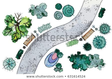 風景 · 計画 · 庭園 · 水 · 木材 · 木 - ストックフォト © jelen80