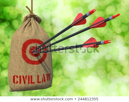Civil Law - Arrows Hit in Red Target. Stock photo © tashatuvango