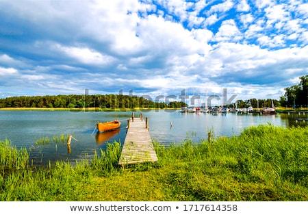 桟橋 海 水 木材 自然 青 ストックフォト © actionsports