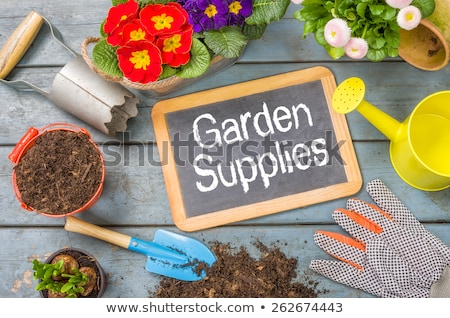 Blackboard on a plant table with garden tools - Spring offer Stock photo © Zerbor