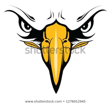 illustration of great eagle face stock photo © silverrose1