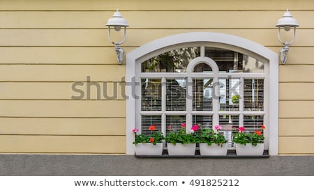 Pink facade with white windows and street lamp Stock photo © pixachi