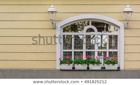 öreg · fal · ablakok · koszos · zárva · ház - stock fotó © pixachi