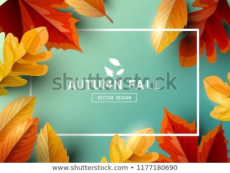 Thanksgiving herfst herfstbladeren grens Stockfoto © solarseven