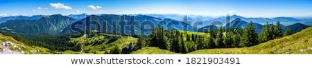 Bavaria Alps near Spitzingsee Stock photo © w20er