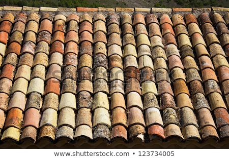 clay old roof tiles pattern in spain stock photo © lunamarina
