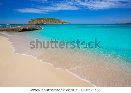 Cala Conta beach in Sant Josep, Ibiza Island, Spain Stock photo © nito