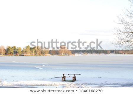 Winter berg bos gedekt vers Stockfoto © Kotenko