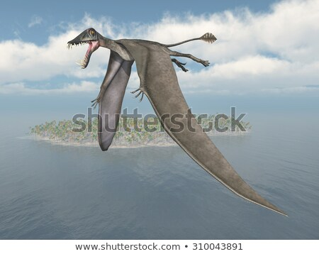 Dorygnathus Flying Stock photo © AlienCat