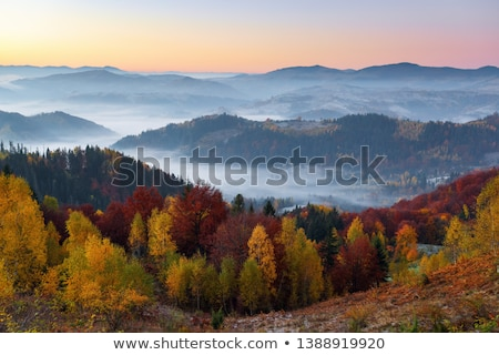 Autumn Carpathians landscape Stock photo © Artspace