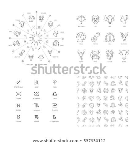 Stock photo: Set of gray zodiac constellations on white