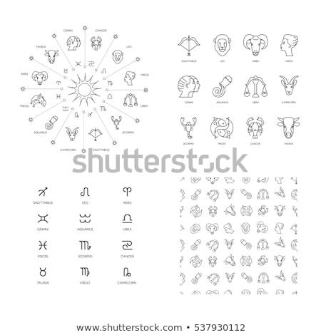 Set of gray zodiac constellations on white Stock photo © Evgeny89