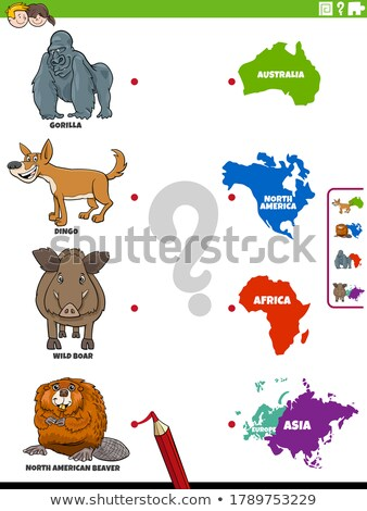 Matching game with wild animals Stock photo © bluering