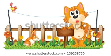 An empty wooden signboard at the garden Stock photo © bluering