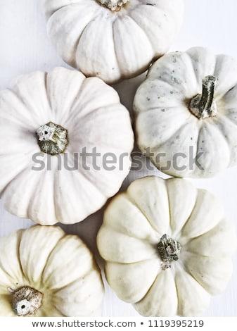autumn still life collage stock photo © lana_m