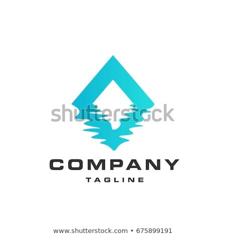 ijs · Blauw · star · vorm · logo · icon - stockfoto © butenkow