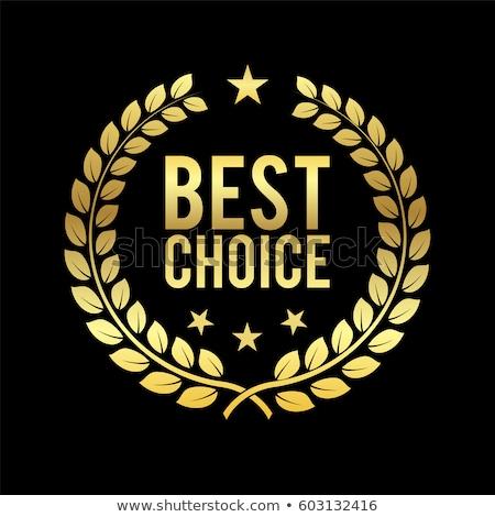 seçim · ödül · mavi · rozet · iş · imzalamak - stok fotoğraf © timurock