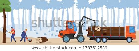 woodcutter Stock photo © adrenalina