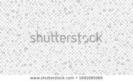 Water Droplets On White Stock photo © albund