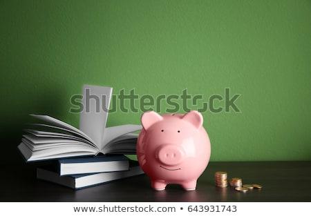 Książki banku piggy edukacji fundusz czesne szkoły Zdjęcia stock © devon