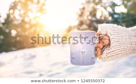 forró · tél · kávé · ünnepek · csésze · karácsony - stock fotó © Lana_M