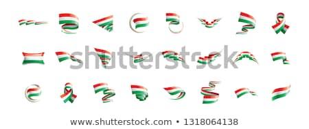 Macaristan bayrak şerit yalıtılmış simge Stok fotoğraf © popaukropa