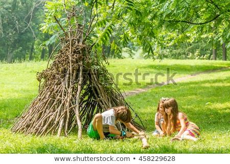 три дети кемпинга лесу иллюстрация лес Сток-фото © bluering