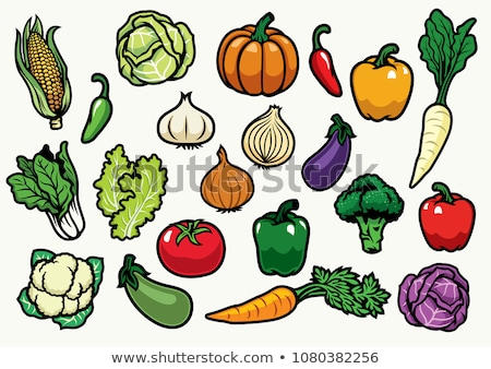 Soil Vegetables Fruits Illustration Stock photo © lenm