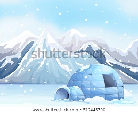 Scene with igloo on snow ground Stock photo © colematt