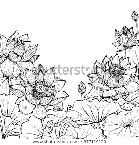 花 フレーム ベクトル 手描き パターン ストックフォト © Margolana