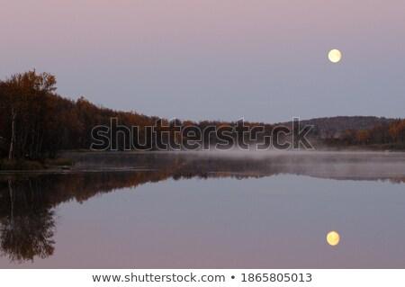 Luar grande parque ilustração natureza luz Foto stock © colematt