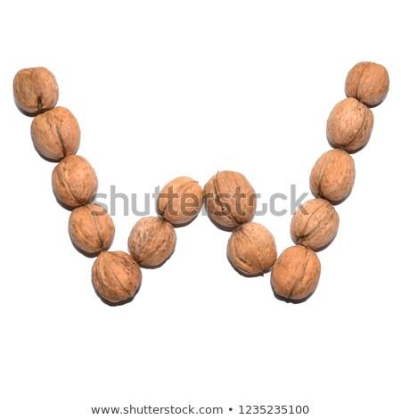 Walnoot voedsel onderwijs gebroken tekening Stockfoto © colematt