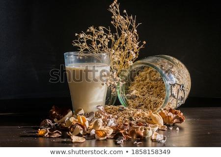 homemade granola with milk style vintage stock photo © zoryanchik