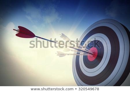 Telitalálat nyilak 3d illusztráció tanulás siker cél Stock fotó © limbi007