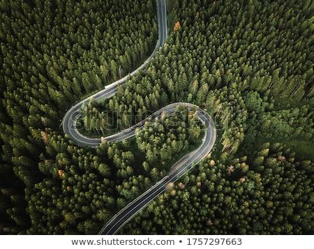 drogowego · lasu · drewna · charakter · krajobraz · drzew - zdjęcia stock © artjazz
