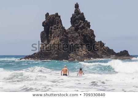 Beach playa Benijo, Tenerife island, Spain Stock photo © neirfy
