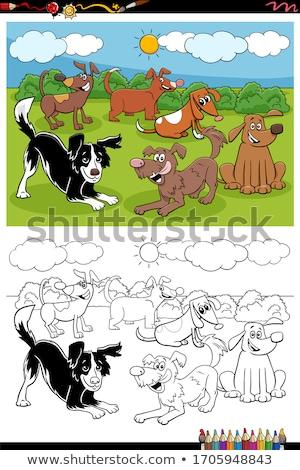 Stockfoto: Honden · park · groep · kleurboek · cartoon · illustratie