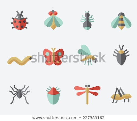Stock photo: Insects flat icons set