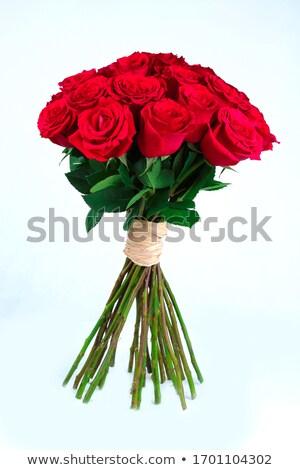 Kırmızı gül çiçek çiçekler sevmek güller Stok fotoğraf © phbcz