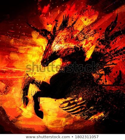 ognia · konia · głowie · czarny · streszczenie · świetle - zdjęcia stock © ensiferrum