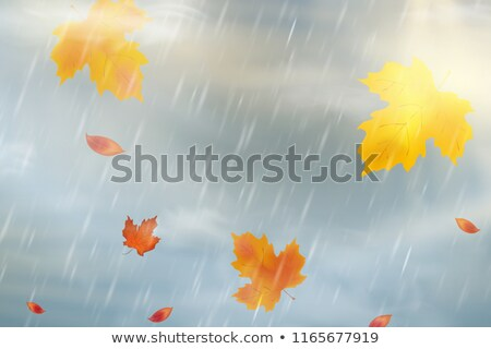 Rainy Cloud And Falling Water Drop Retro Vector Stock photo © pikepicture