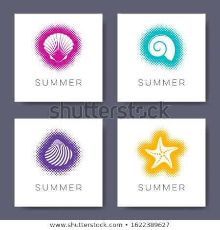 Vetor verão cartões conchas meio-tom projeto Foto stock © blumer1979
