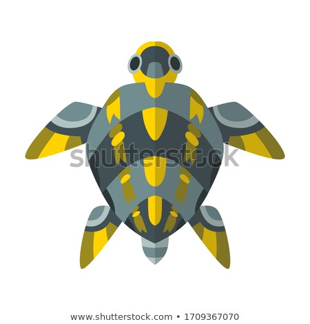 Vector cartoon mechanical robotic turtle. Toy androids with artificial intelligence, pet for games.  Stock photo © designer_things