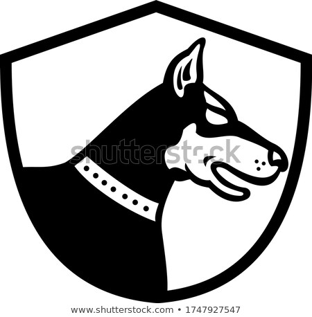 Doberman Pinscher Dog Head Side View Crest Retro Black and White Stock photo © patrimonio
