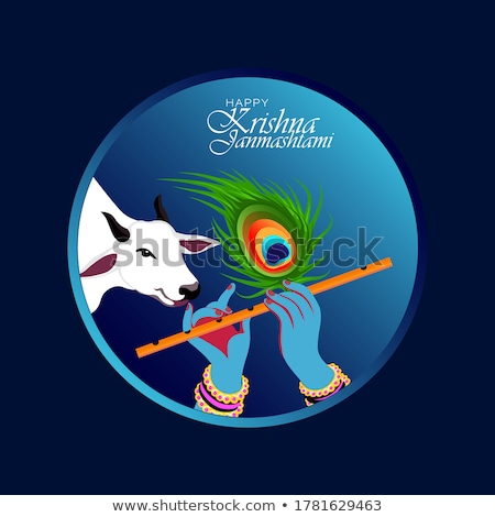 janmashtami festival peacock feather banner design vector Stock photo © SArts