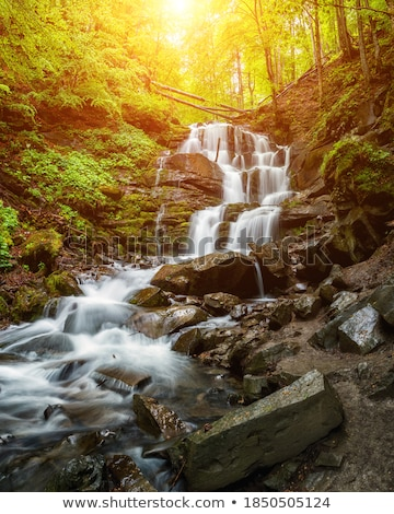 waterfall and brook in mountain forest ravine stock photo © wildman