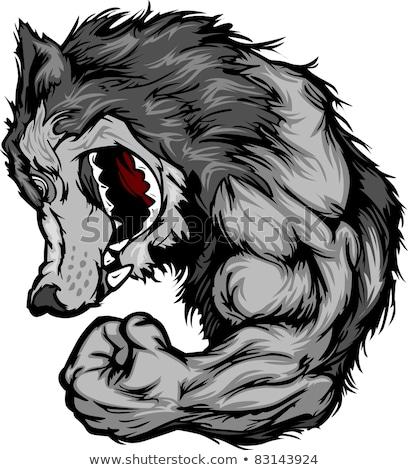 ストックフォト: Wolf Mascot Flexing Arm Vector Cartoon