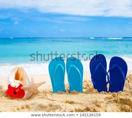 сандалии цветы изолированный белый пляж цветок Сток-фото © adamson